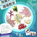 6月8日(土)『海藻おしばづくり環境教室inサントムーン』