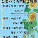 5月19日(日)ひまわりの苗植え体験